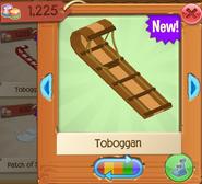 Toboggan 4
