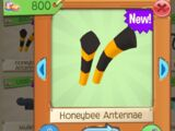 Honeybee Antennae