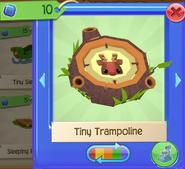 Tramp 6
