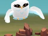 Pet Snowy Owl