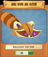 RaccoonH 3