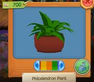 Plantb 4
