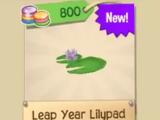 Rare Leap Year Lilypad