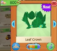 CrownL 6
