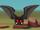 Pet Vampire Bat