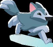 Arctic wolf graphic