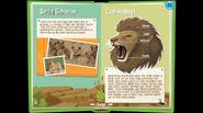 LionEB 5