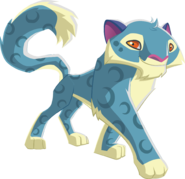 Image of: Wiki Abcfd1e5efd6469687f30edfcc789535 Play Wild Wiki Fandom Snow Leopard Play Wild Wiki Fandom Powered By Wikia