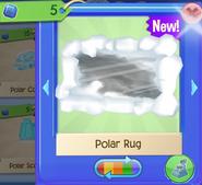 PolarR 4