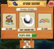 Rarecowboyhatbunny