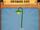 Shamrock Lamp