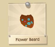Beard 2