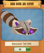 RaccoonH 2