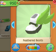 Feathered boots 1