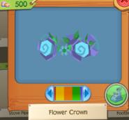 Flower Crown 4