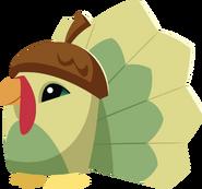 Pet+Turkey+