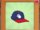 Professional Baseball Cap
