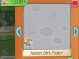 Moon Dirt Floor