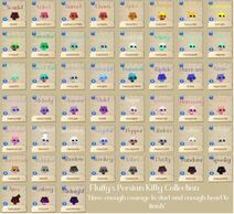 Persiankittycollectioncompleted32923