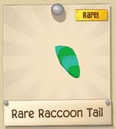 RRaccoonT 3
