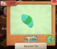 Raccoon 4-min