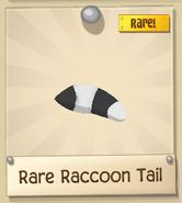 RRaccoonT 4