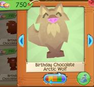 Birthday chocolate arctic wolf 1