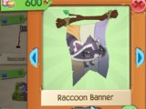 Raccoon Banner