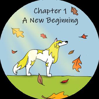 Chapter 1 beginning