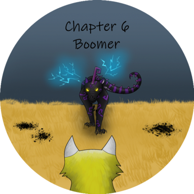 Chapter 6 boom