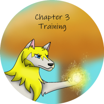 Chapter 3 training