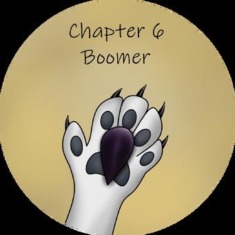 Chapter 6 boom transparent
