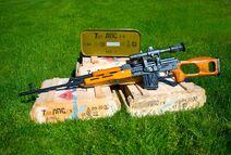 PSL ammo