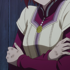 Shirayuki's burned hands.