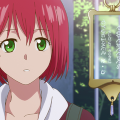 Guard shows Shirayuki what Court IDs look like.