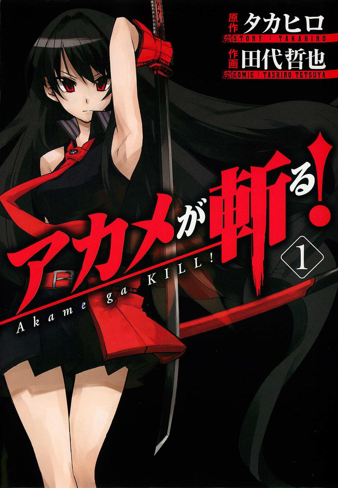 Image result for akame ga kill manga cover