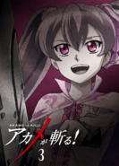 Akame ga Kill Vol. 3 Blu-ray (Japan)