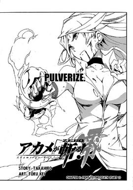 Chapter 11 Zero Cover