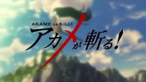 Akame Ga Kill ! OP【Opening 1】New ! HD