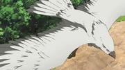 Hálcon Gigante