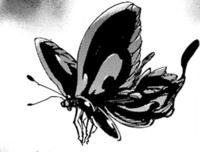 Butterfly Wriggler