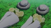 Ieyasus-und-Sayos-Grab