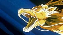 Puño del dragon 3