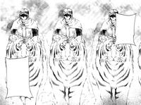 Caballos disfrazados de tigres
