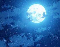 Moonlight24