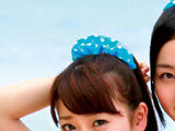Ponytail to Shushu (Song)