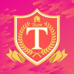 TeamT Logo 2018