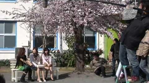 10年桜 メイキング映像 AKB48 公式