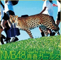 NMB48N2ndStageCD