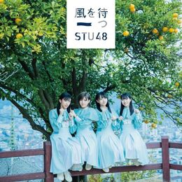STU482ndSingleTypeBLim